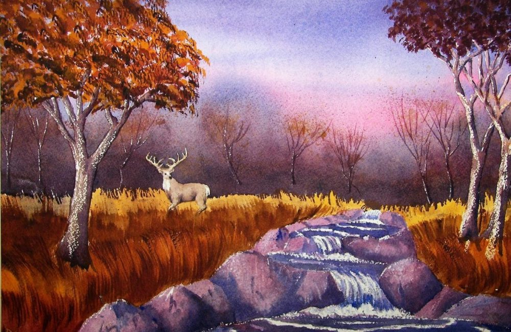 Buck by the Creek